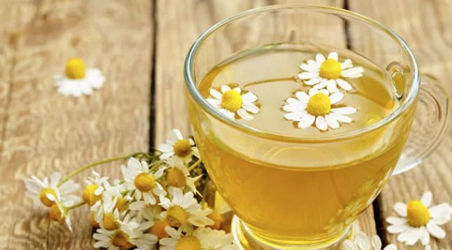 Papatya çayının faydaları neler? Papatya çayı neye iyi gelir? (Besin değeri)