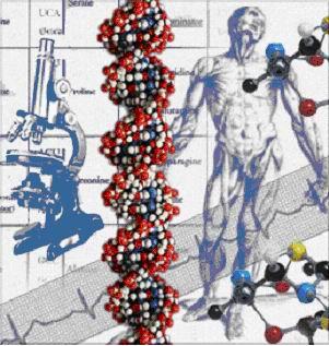 Şeker Hastalığı Tedavisinde Kök Hücre Başarısı