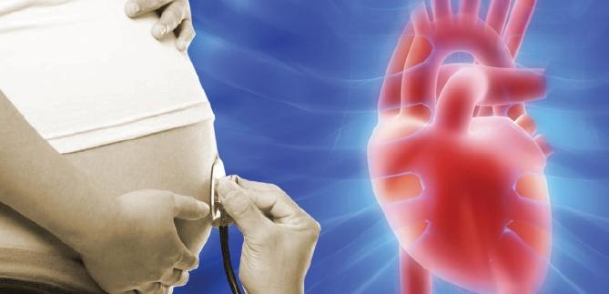 kalp hastası hamile