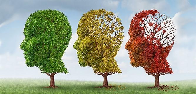Alzheimer Riskini Azaltan Sağlıklı Yaşam Alışkanlıkları